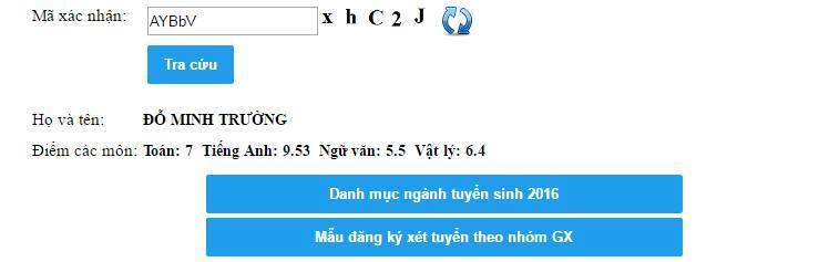 Truong Minh Hoang